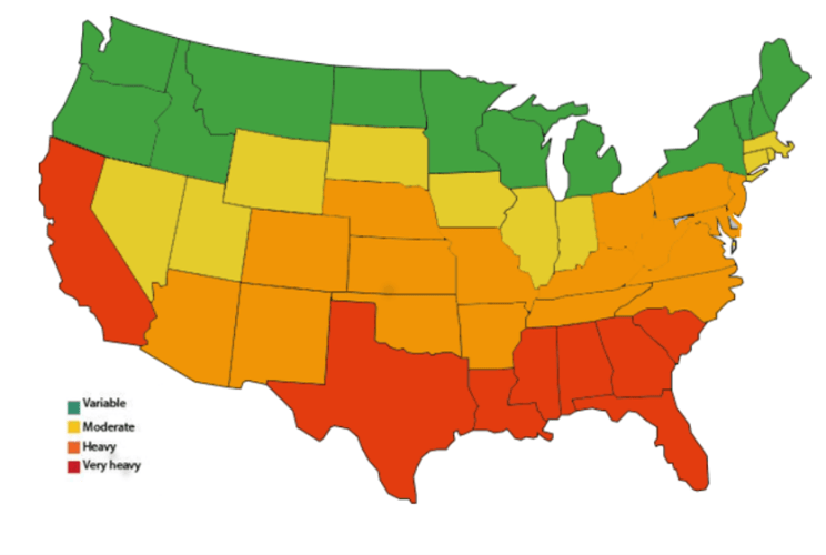 Concentration of termites in USA and homeowner termite risk